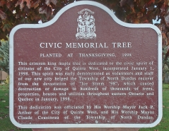 CIVIC MEMORIAL TREE